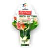 """Стимулятор для комнатных цветов """"Магия цветения"""" JOY 30 мл 132086 (12)"""